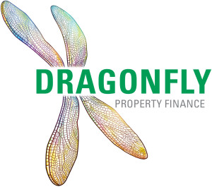 dragonfly finance
